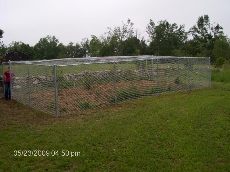 Protective Garden Fence, Right