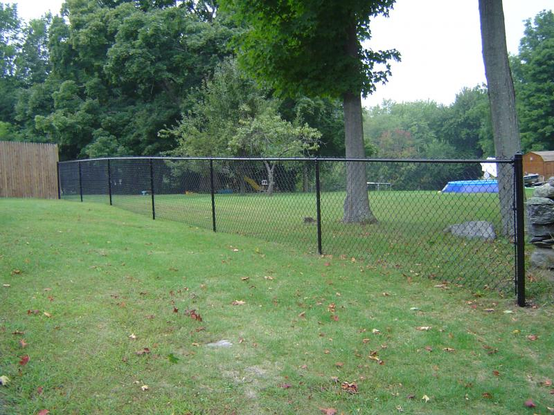 Black Vinyl-Coated Chain Link Fence